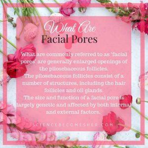 What Are Facial Pores - Can You Shrink Pores