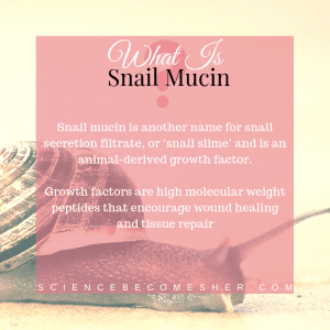 What Is Snail Mucin?