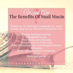 What Are The Benefits Of Snail Mucin?
