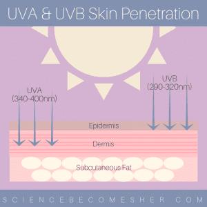 UVA & UVB Skin Penetration